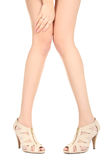 Girl`s legs. Beautiful symmetry legs of the girl isolated on white background stock image