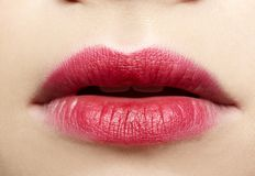 Girl's lips zone make-up royalty free stock photos