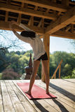 Girl's yoga training Stock Photography