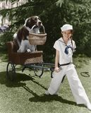 Girl in sailor suit pulling dog in basket Royalty Free Stock Photo