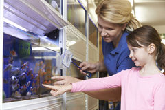 Girl With Sales Assistant Choosing Goldfish In Pet Store Stock Image