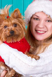 Girl in santa cap with yorkie dog in red sweater Royalty Free Stock Image