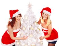 Girl in Santa hat holding Christmas tree. Stock Photography