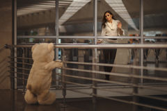 Girl says goodbye with a teddy bear. Royalty Free Stock Images