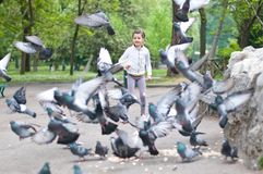 Girl that scares the pigeons Royalty Free Stock Photos
