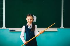 The Girl schoolgirl. Royalty Free Stock Images