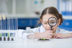 Girl scientist holding magnifying glass and looking at camera. Smiling girl scientist holding magnifying glass and looking at camera Stock Photography