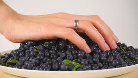 Girl scooping wet huckleberries from a plate. Girl's hand scooping wet huckleberries Royalty Free Stock Photo