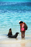 Girl with sea lions Stock Image
