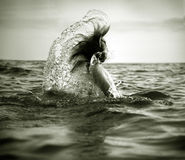 Girl in sea waves. The girl swiming in sea waves. An art photo. A beautiful landscape Stock Photo