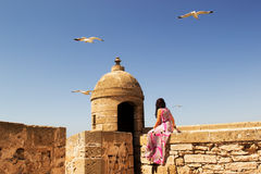 Girl and seagull. Little trip to Essaouira. Morocco stock photos