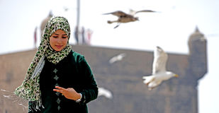 The girl and the seagulls of Essaouira royalty free stock image
