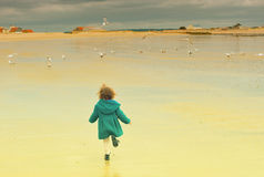 Girl and seagulls. Girl run away.Seagulls flying around royalty free stock images