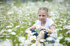 Girl seated in meadow between daisies Stock Images