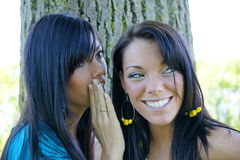 Girl secret. Two beautiful girls sharing a secret or gossip royalty free stock image