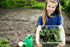Girl with seedlings Royalty Free Stock Images