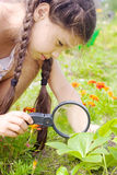 Girl sees flowers through magnifying glass Stock Images