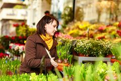Girl selecting flowers at market Royalty Free Stock Images
