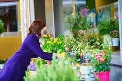 Girl selecting flowers in a Parisian flower shop Stock Images