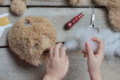 A girl sews a bear toy. Handicraft with children. Child fills the toy with a sintepon. A girl sews a bear toy. Handicraft with children. Child fills the toy Stock Photos