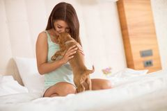 Girl share tenderness with her lapdog in bed. Young girl share tenderness with her sweet lapdog in bed Royalty Free Stock Photography