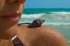 Girl with a shell Stock Images