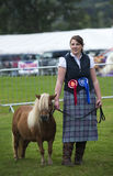 Girl and Shetland Royalty Free Stock Photos