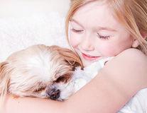 Girl with shih tzu dog Stock Image