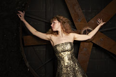 Girl in shiny brocade dress against on a dark back Stock Photos