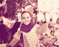 Girl shopping at festive fair before Xmas in evening time Royalty Free Stock Images