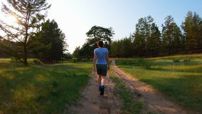 Girl in shorts and blue t-shirt walking on a country road at sunset. Back view stock video footage
