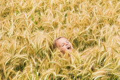 Girl shouting in the wheat field royalty free stock photography