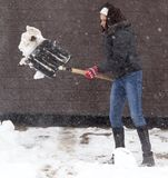 Girl with a shovel cleans the snow.  Stock Photography