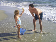 Girl (3-5) showing father starfish on beach Royalty Free Stock Photo