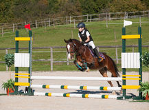 Girl on showjumping competition Stock Photo