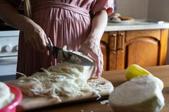 Girl shreds cabbage with a knife. Kitchen. cooking dinner cut vegetables. close-up. stock photos
