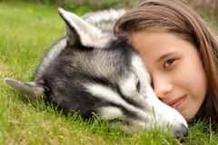 Girl and siberian husky Stock Photography