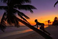 Girl silhouette palm tree Caribbean sunset. Girl silhouette on palm tree Caribbean sunset beach of Riviera Maya Mexico Royalty Free Stock Photography