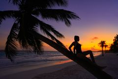 Girl silhouette palm tree Caribbean sunset. Girl silhouette on palm tree Caribbean sunset beach of Riviera Maya Mexico Royalty Free Stock Images