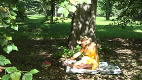 Girl sit on plaid under tree and read books in park on sunny summer day. 4K stock video footage