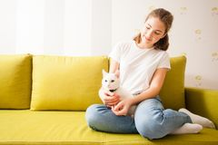Home atmosphere with the cat. The girl are siting on the sofa and caring the cat Stock Photos