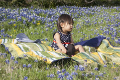 Girl sits in Bluebonnet field. In springtime, it is a time of blooming and Bluebonnet, the flowers in Texas will bloom too but for a short time. In this picture royalty free stock photo
