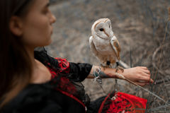 Girl sits on grass with owl on her hand in forest. Close-up. Royalty Free Stock Image