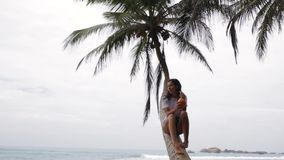 The girl sits on a palm tree.  stock footage