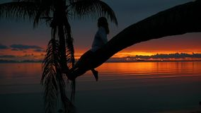 A girl sits on a palm tree on a background of red sunset on the seashore stock footage