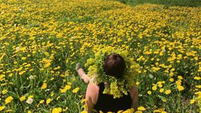 The girl sits on a spring meadow, overgrown with flowering dandelions. On the head of the vein of dandelions. Sunny spring in the. Park stock video
