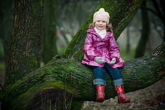 Girl sits on a tree Stock Photos