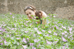 A girl sits in the wild flowers Stock Photography