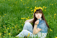 Girl Sitting Among Dandelions Royalty Free Stock Photos