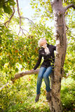 Girl sitting on a apple tree Royalty Free Stock Photos